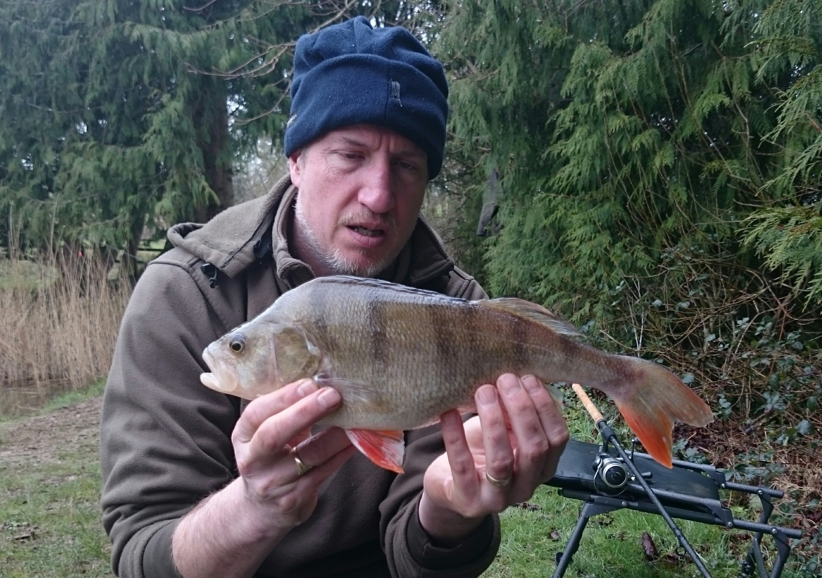 Fishing holiday in devon with private fishing lake for Private fishing lakes